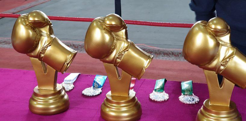 в г.Кара-Балта прошел международный турнир по боксу среди юношей
